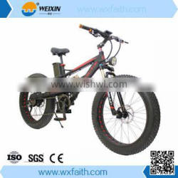 2016 New LED Ligths Electric Mountain Easy Use Bike