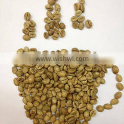 Robusta washed Coffee Beans from Vietnam