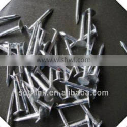 electric galvanized flat head roofing nails