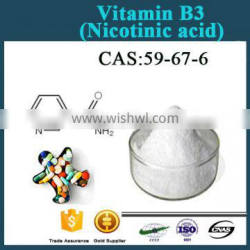 High Purity Vitamin B3 Niacin Powder