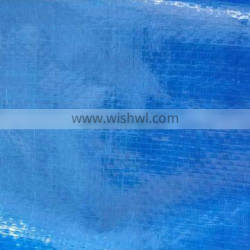 Practical heavy duty waterproof PE tarpaulin for roof cover and other coverage use