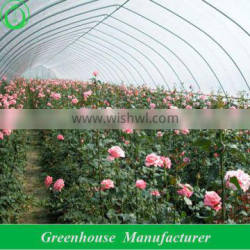 plastic tunnel greenhouse