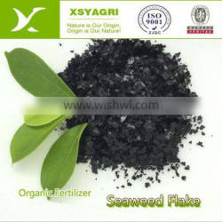 Soluble Seaweed Extract Flake in Organic Fertilizer