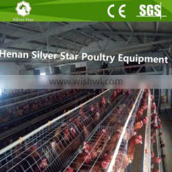 Automatic poultry cage chicken poultry layer cage for sale