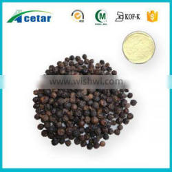 high quality low price company black pepper powder