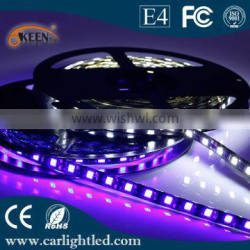12V Wholesale CE/RoHs Waterproof RGB IP65 led Light Strip 60 leds/M SMD 5050 flexible battery powered LED strip light