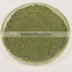 Natural Moringa leaf powder, could be used to make Dietary Supplement