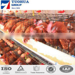 4 tiers poultry layer cage for sale