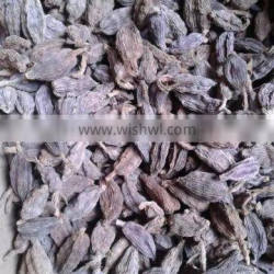 spices and herbs, new crop black cardamom with best price