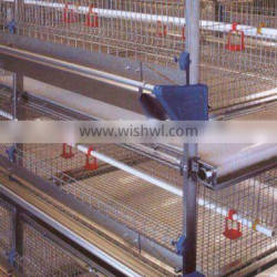 pullet rearing cage,automatic chicken cage