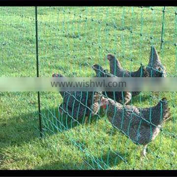 Portable plastic fencing net for chicken&sheep&deer/poultry netting