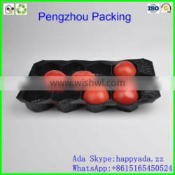 pp tray PP Fruit Tray For tomato