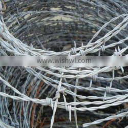 barbed wire price per ton/roll china manufacture hot sale products