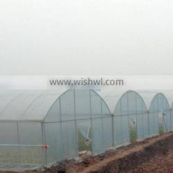 Cheap fruit vegetable flower greenhouse tent for sale