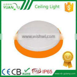 delicated appearance ceiling light fixture
