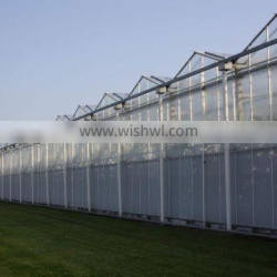 Hot Sale Agriculture Used PCsheet Greenhouse commercial used
