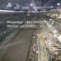 Hot Galvanized Steel Wire Duck Poultry Farm Equipment 3tiers 60/90birds Egg Duck Battery Poultry Cage For Sale