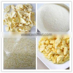Supply VF Dried Pineapple Slices with Competitive Price