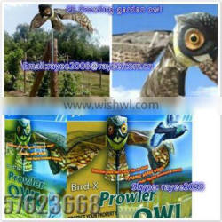 PE Prowling garden owl,PE plastic flying life-like owl decoy for hunting and garden decoration