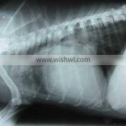 medical thermal x ray film,medical thermal dry film ,medical surgical consumables