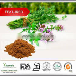 China supplier of Thyme Extract / Free sample Thyme Extract / Thyme Extract powder
