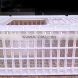 plastic crates for transporting chickens