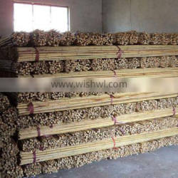 Natural dry bamboo stick