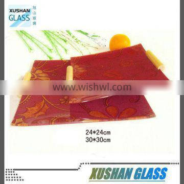 Square tempered glass plates with handle