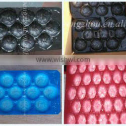 39*59cm Hot Product Factory Supply PVC PP Apple Fruit Tray