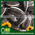 The Biggest Export Company Wholesale Raw Material Sunflower Seeds High Quality