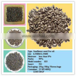New Crop High Oil Content Sunflower Seeds 033 With High Quality