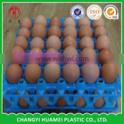 Injection China whoelsale intubator egg tray