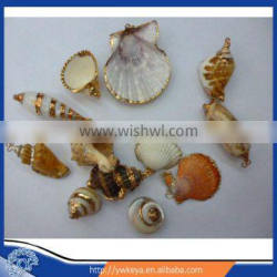 natural sea shell shaped pendant , shell pendant jewelry findings mixed styles 100pcs/bag accept paypal