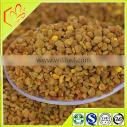 high protein health products buckwheat bee pollen from China mountain