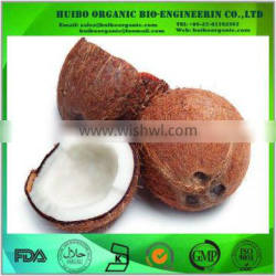 Best prices of desiccated coconut powder