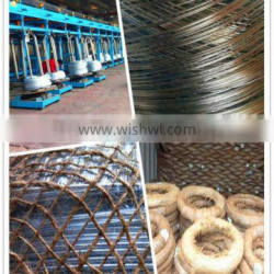 ISO 9001 BWG 5 - 28 galvanized black wire cloth (Electro / Hot dipped galvanized)