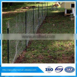 """72"""" x 150' ft 1"""" Mesh Galvanized Poultry Netting chicken wire roll wire fencing"""