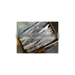 Supply pacific saury