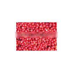 Frozen style 2016 new crop lingonberry wild berry
