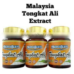 GMP HACCP ISO 22000 Natural Male Sexual Enhancement Tongkat Ali Extract Powder