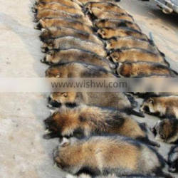 High Quality Raccoon Dog Fur Skin With Good Prices