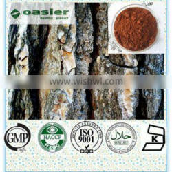 100% Natural Pine Bark Extract factory price