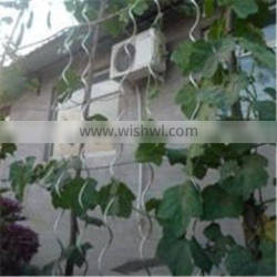 plant climbing wire/vegetable wire/iron spiral tomato stakes