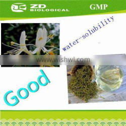 manufacturer supply Natural Honeysuckle Extract high quality