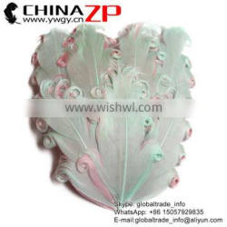 ZPDECOR Factory Wholesale Best Cheap Dyed Mint with Light Pink Curled Goose Feathers Pad Plume Craft for Hair Accessories