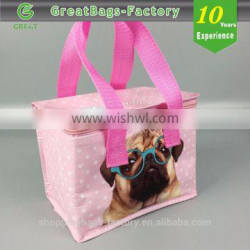 Recycle Customized Cooler Insulated Lunch Bag