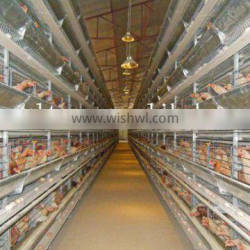cages for layers chicken house/sheds /farm