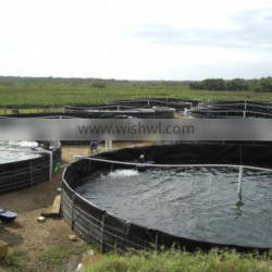outdoor intensive fish tanks system for catfish