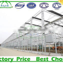 China Supplier Galvanized Round Steel Pipe For Greenhouse Frame