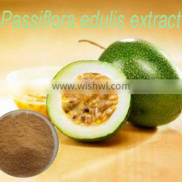 100% Natural Passion Flower Extract for 10:1& 20:1